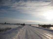 В Запорожской области маршрутка с людьми вылетела в кювет