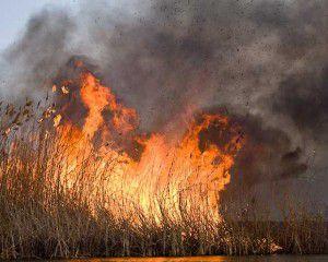Энергодарцев напугал сильный пожар