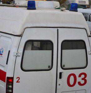 В Запорожской области  водитель на «Шкоды» погиб, врезавшись в дерево