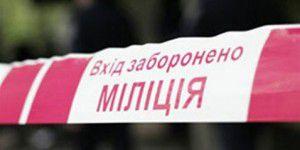 1371538859_milicia