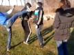 В Запорожье 15-летний подросток устроил публичную расправу над бывшей девушкой (Видео)