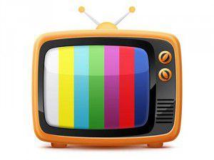 20130219_TV