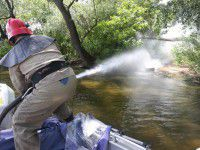 Фоторепортаж: спасатели с брандспойтами бегали по Хортице