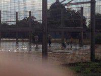 ФОТО ДНЯ: футбольное поле ушло под воду