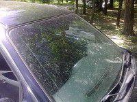 В Запорожье иномарка с георгиевской лентой получила «на орехи» (ФОТО)
