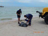 В Кирилловке на дне моря нашли мину