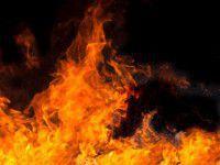 В Бердянске из-за елей едва не сгорел телеканал