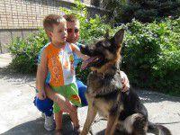 Служебный пес Гром помог найти потерявшегося малыша