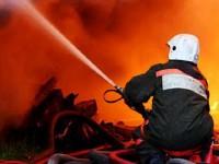В Запорожье горели Хортица и городская свалка