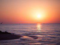 Утреннее фото: море в Кирилловке в лучах летнего солнца приобрело розовый оттенок