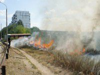 На Бабурке снова вспыхнул масштабный пожар (ФОТО)