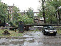 В курортном городе во время бури погибла женщина