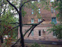В Запорожской области подсчитали убытки, нанесенные непогодой