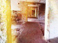 Утреннее фото: Остров Хортица в красно-желтых тонах