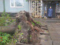 В Запорожской области снова прогнозируют сильный ветер