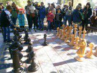 В Запорожской области установили шахматный парк под открытым небом