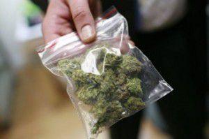 marihuana-izlechivaet-toshnotu--460x306