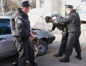 1-militsiya-zaderzhivaet-vora-sobaka-300x231