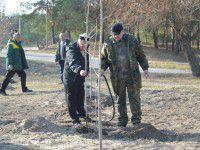 В городе-спутнике высадили аллею в память о солдатах АТО