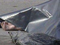 Запорожские спасатели выловили из речки тело мужчины