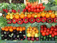 Меценат передал запорожским военным 10 тонн овощей