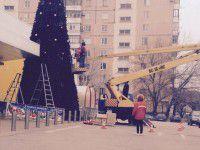 Фотофакт: В Запорожье появилась еще одна огромная новогодняя елка