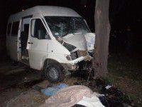 В Запорожье «Мерседес» врезался в дерево — водитель погиб (Фото 18+)