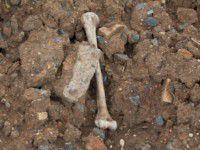 На территории воинской части нашли человеческие останки