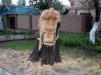 В Бердянске умелец вырезал из упавшего дерева скульптуру