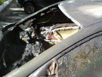 В Мелитополе снова сгорела иномарка