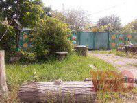 Житель Запорожской области «украсил» двор головой кота