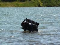 Тело пропавшей девушки нашли в пруду