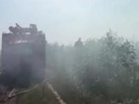 Под Запорожьем огонь охватил несколько гектаров леса (Видео)