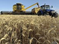 В Запорожской области собрали самый крупный урожай за последние 25 лет