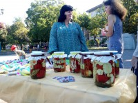 В Запорожье проходит первый для Украины фестиваль консервации