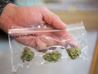 Двух жителей Запорожской области оштрафовали за хранение наркотиков