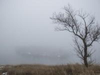 В последний день февраля запорожцы делятся снимками зимних пейзажей