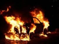 В Запорожской области сгорела иномарка