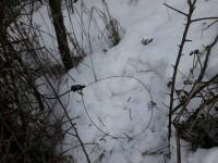 Хортица усыпана капканами (Фото)