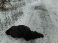 В Запорожской области посевальщики уснули на дороге (Фото)