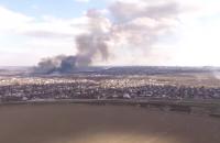 Масштабный пожар, в котором погибли редкие птицы, сняли с высоты (Видео)