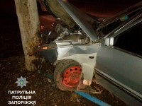 В Запорожье пьяный водитель влетел в дерево (фото)