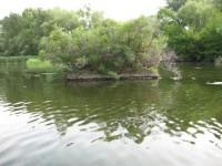 Остров Ленина в Запорожье получил новое название
