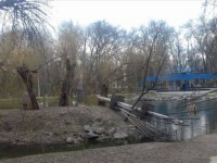В центральном парке Запорожья рухнула опора веревочного парка