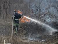 В Запорожье тушили пожар на Хортице (Фото)