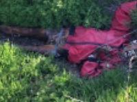 В Запорожье на пустыре обнаружили обгоревшее тело