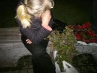 Возле запорожской мэрии украли кусты роз