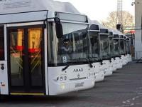 Запорожью выделят деньги на покупку 25 троллейбусов