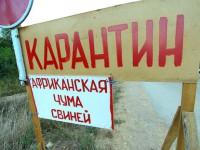 В Запорожской области селяне готовятся защищать скот с вилами