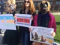 Запорожцы вышли митинговать в масках животных